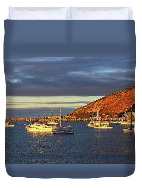 Duvet Cover featuring the photograph Winter Afternoon Sun At Friendly Bay by Nareeta Martin
