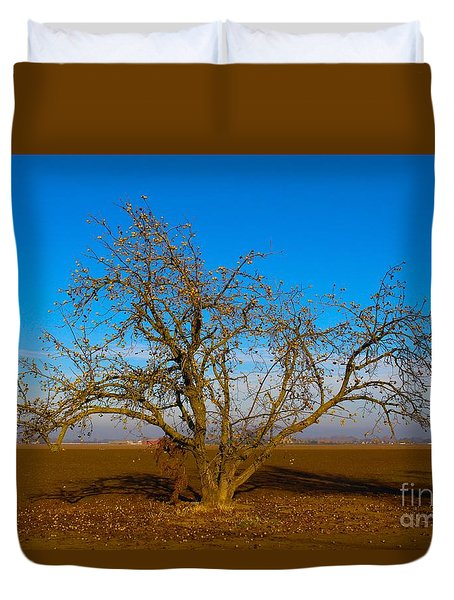 Winter Apple Tree Duvet Cover by Suzanne Lorenz