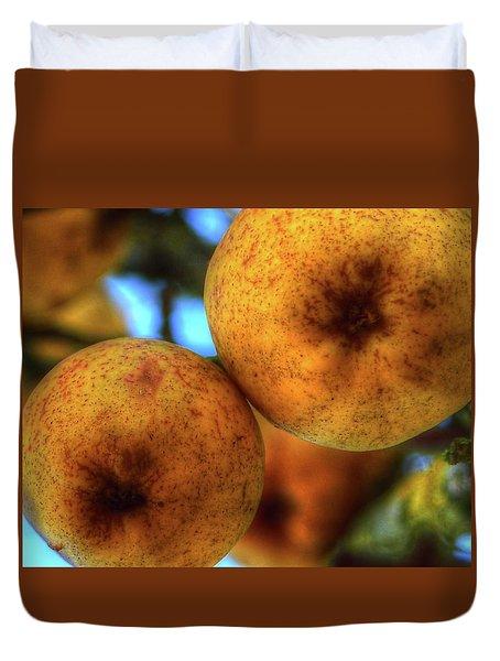 Winter Apples 2 Duvet Cover