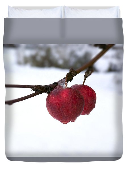 Winter Apples Duvet Cover