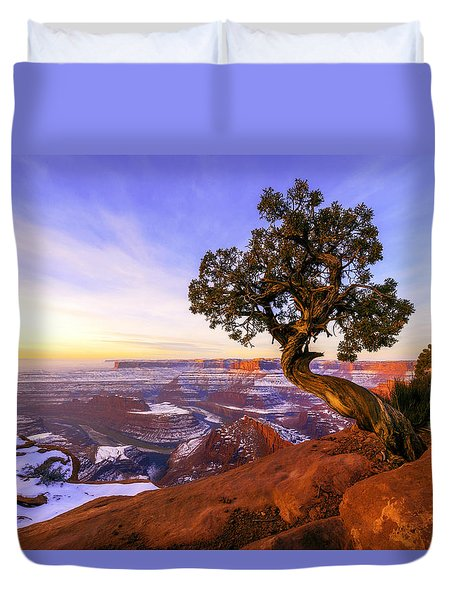 Winter At Dead Horse Duvet Cover by Chad Dutson