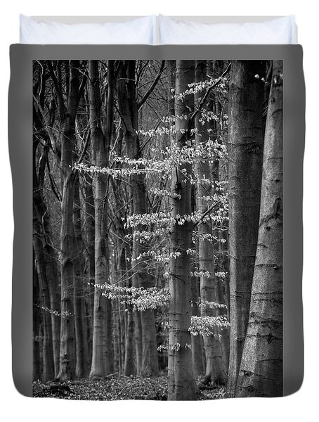 Winter Beech Duvet Cover