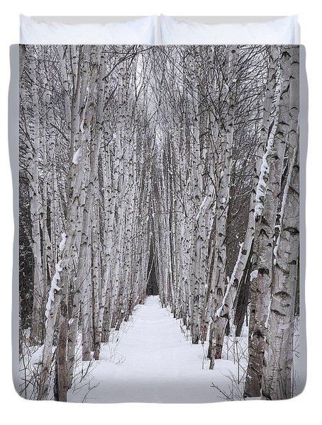 Winter Birch Path Duvet Cover