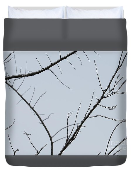 Winter Branches Duvet Cover by Craig Walters