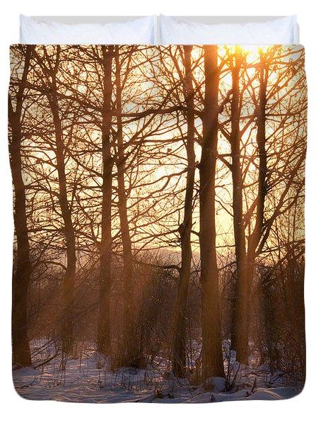 Winter Break Duvet Cover by Wim Lanclus
