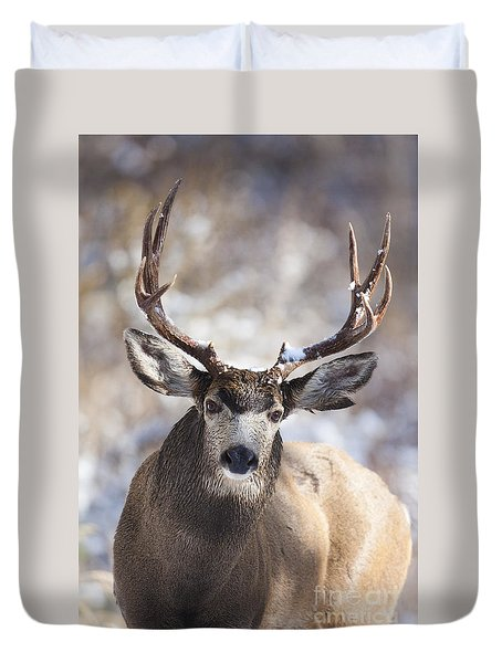 Winter Buck II Duvet Cover