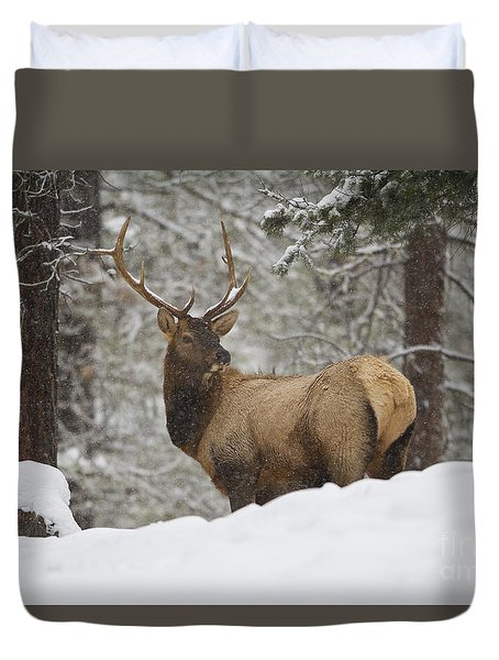Winter Bull Duvet Cover