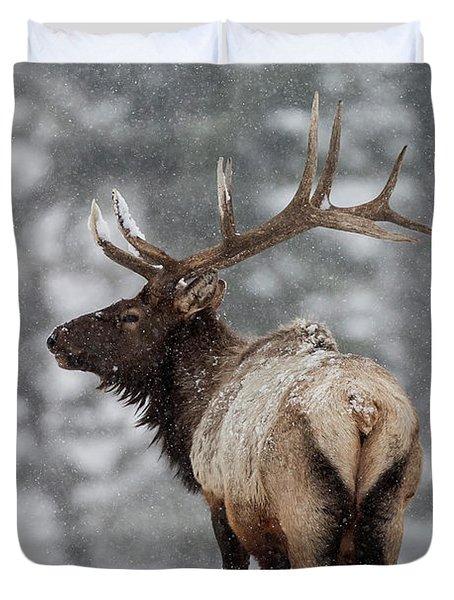 Winter Bull Elk Duvet Cover