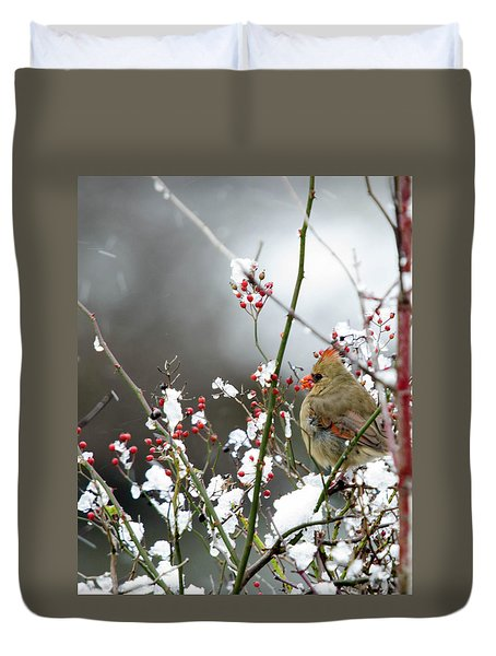 Duvet Cover featuring the photograph Winter Cardinal by Gary Wightman
