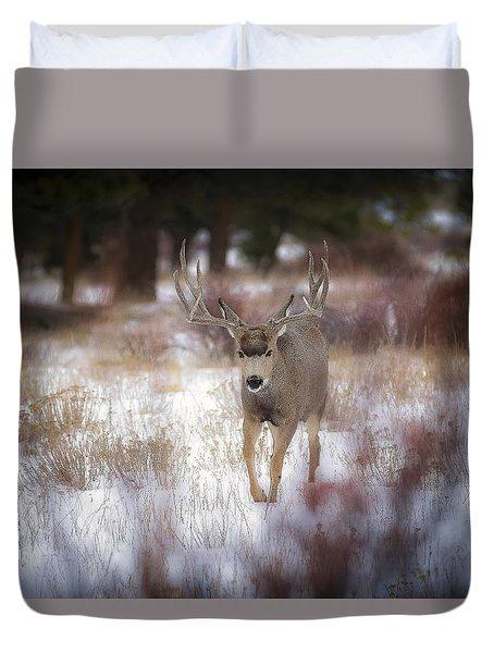 Winter Colors Duvet Cover