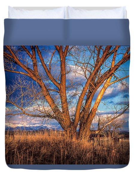 Winter Cottonwood Ranch Landscape Colorado Duvet Cover