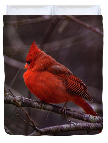Winter Crimson  Duvet Cover