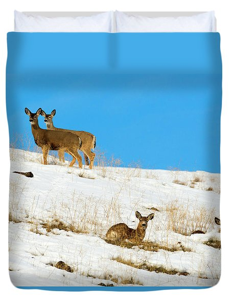 Duvet Cover featuring the photograph Winter Deer by Mike Dawson