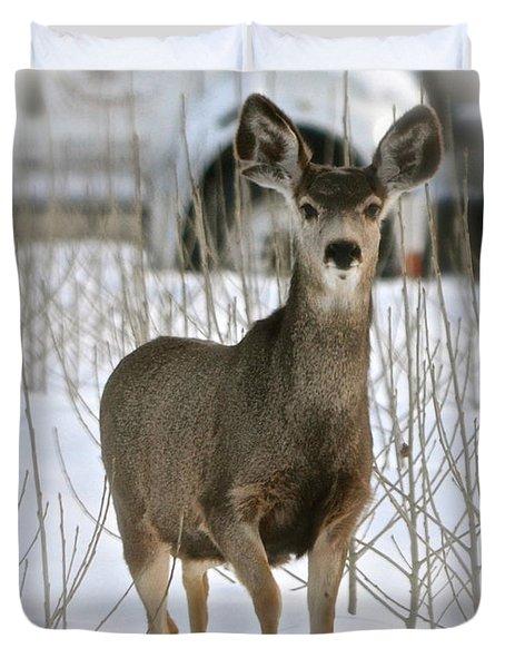 Winter Deer On The Tree Farm Duvet Cover
