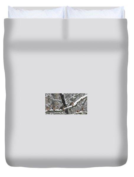 Winter Doves Duvet Cover by Diane Giurco