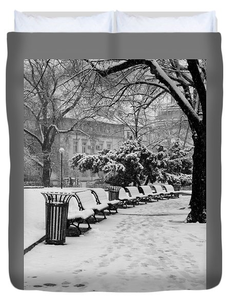 Winter Down The Path Duvet Cover by Rae Tucker