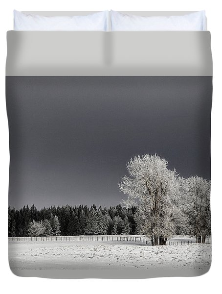 Winter Dreamscape Duvet Cover