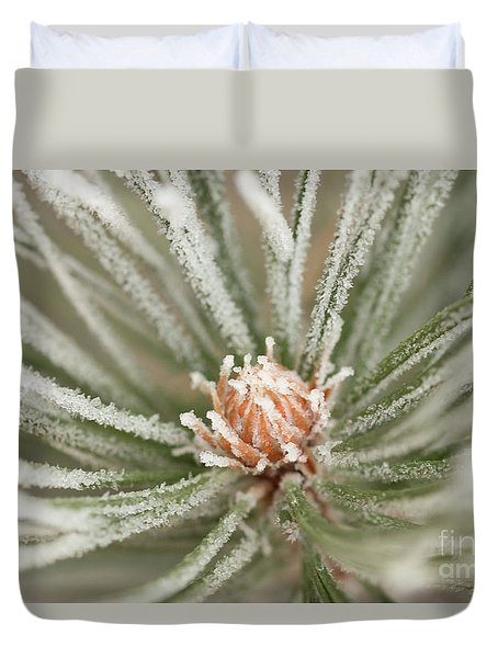 Duvet Cover featuring the photograph Winter Evergreen by Ana V Ramirez