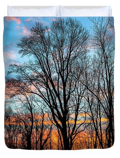Winter Glory Duvet Cover