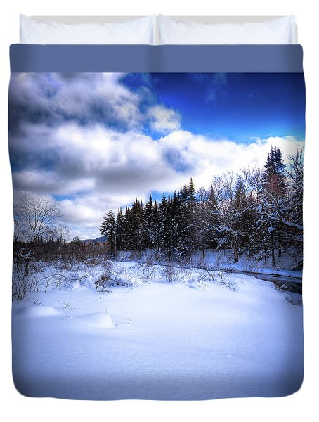 Duvet Cover featuring the photograph Winter Highlights by David Patterson