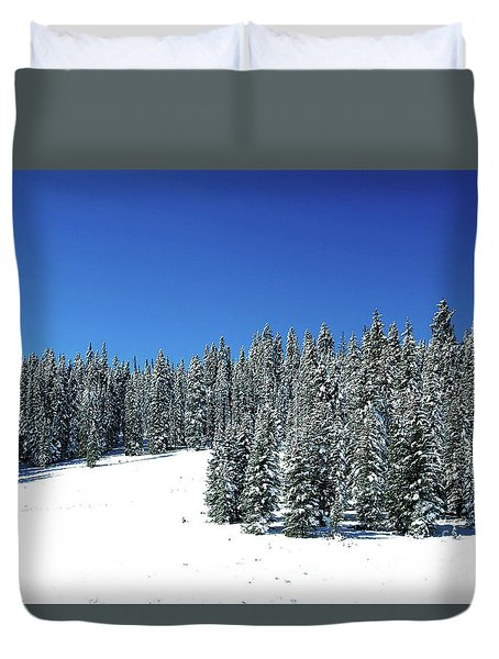 Winter In Colorado  Duvet Cover