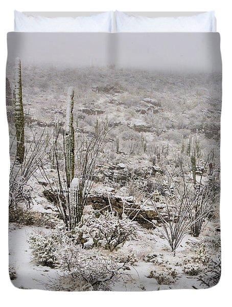 Winter In The Desert Duvet Cover by Sandra Bronstein