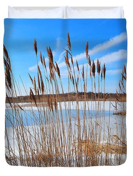 Winter In The Salt Marsh Duvet Cover by Catherine Reusch Daley