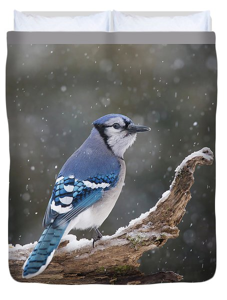 Duvet Cover featuring the photograph Winter Jay by Mircea Costina Photography