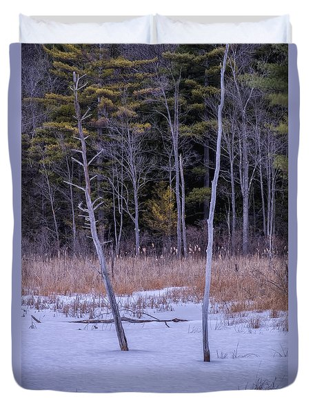 Winter Marsh And Trees Duvet Cover