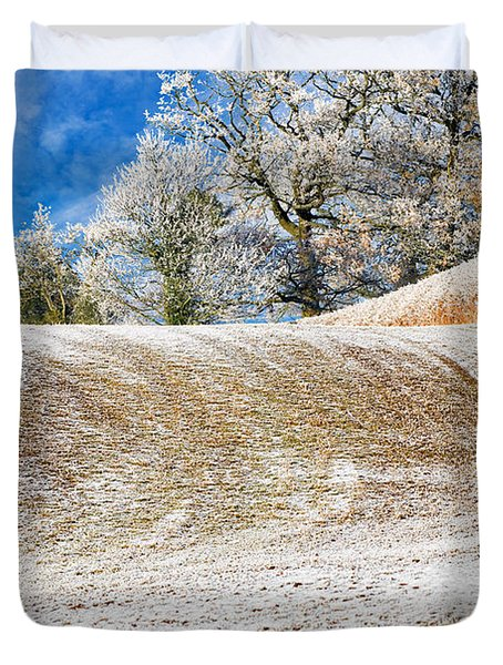 Winter Duvet Cover by Meirion Matthias