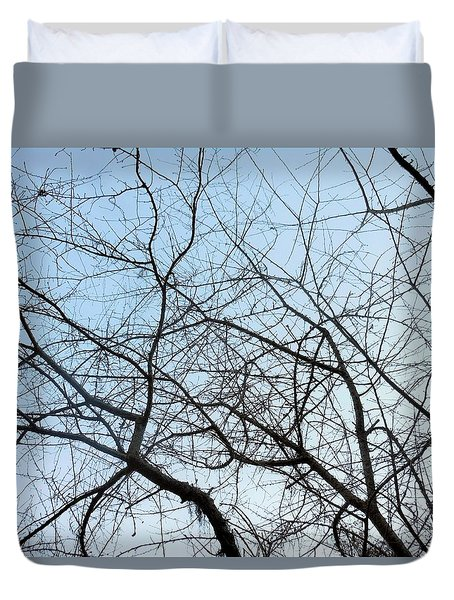 Winter Of Life Duvet Cover by Kay Gilley