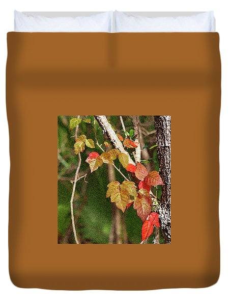 Winter On Gillot Blvd. Pt. Charlotte,fl Duvet Cover