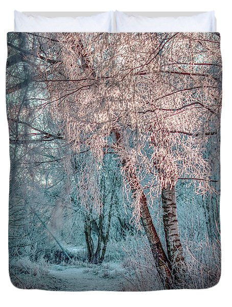 Duvet Cover featuring the photograph Winter Path #h1 by Leif Sohlman
