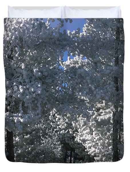 Winter Pathway Duvet Cover by Sandra Bronstein