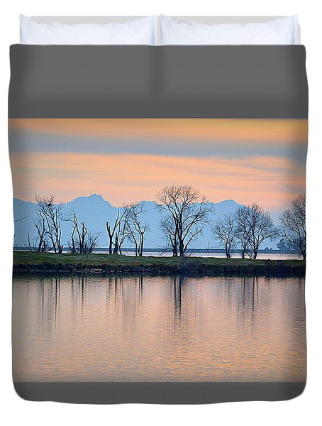 Winter Reflections Duvet Cover