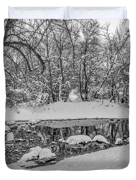 Winter Reflections In A Creek Duvet Cover