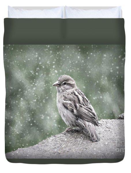Winter Sparrow Duvet Cover