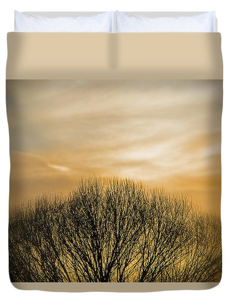 Winter Sunset Duvet Cover by Charles Ables