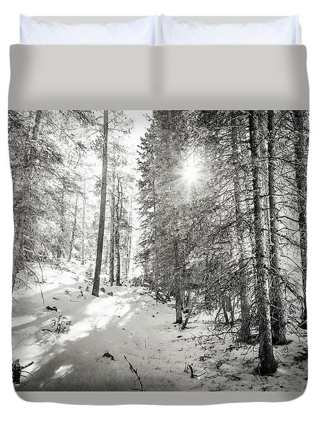 Duvet Cover featuring the photograph Winter Sunshine Forest Shades Of Gray by James BO Insogna