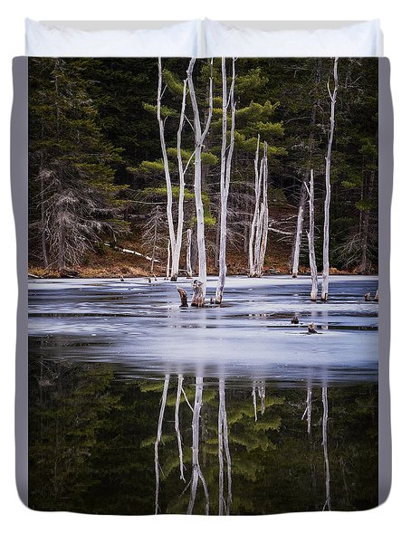 Winter Thaw Relections Duvet Cover by Tom Singleton