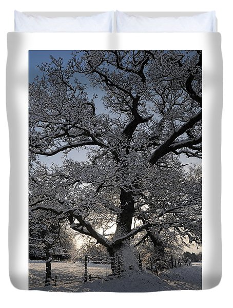 Winter Tree In North Wales Duvet Cover