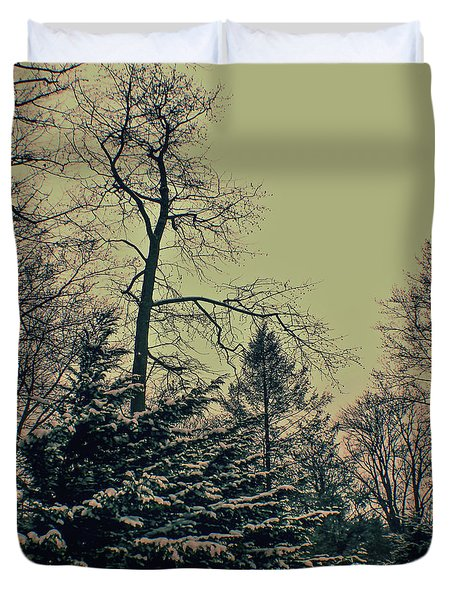 Winter Trees Duvet Cover by Sandy Moulder