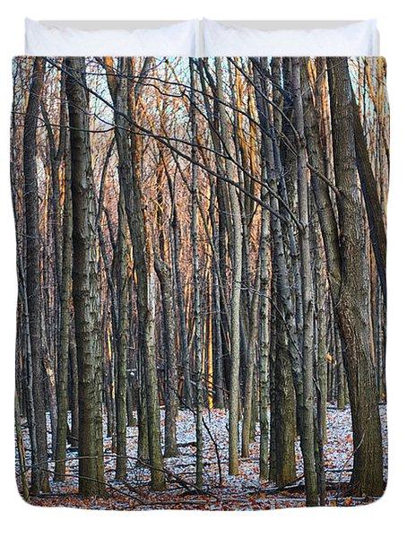 Winter - Uw Arboretum Madison Wisconsin Duvet Cover