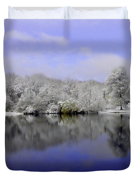 Winter View Duvet Cover by Karol Livote