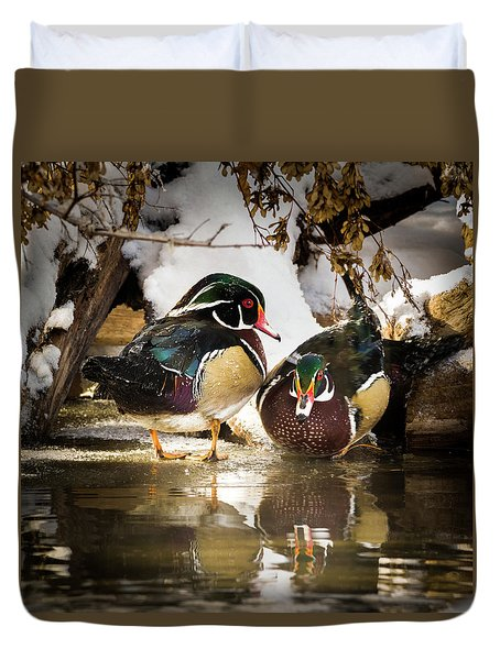 Winter Visitors - Wood Ducks Duvet Cover
