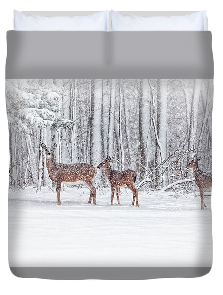 Winter Visits Duvet Cover