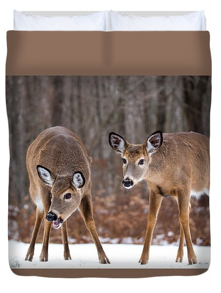 Winter White Tail Deer Duvet Cover
