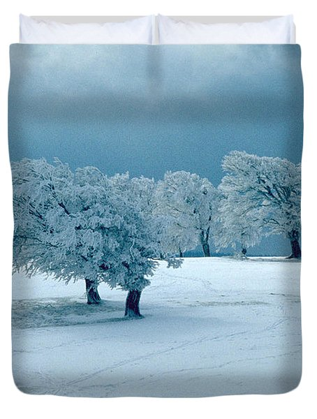 Winter Wonderland Duvet Cover by Flavia Westerwelle