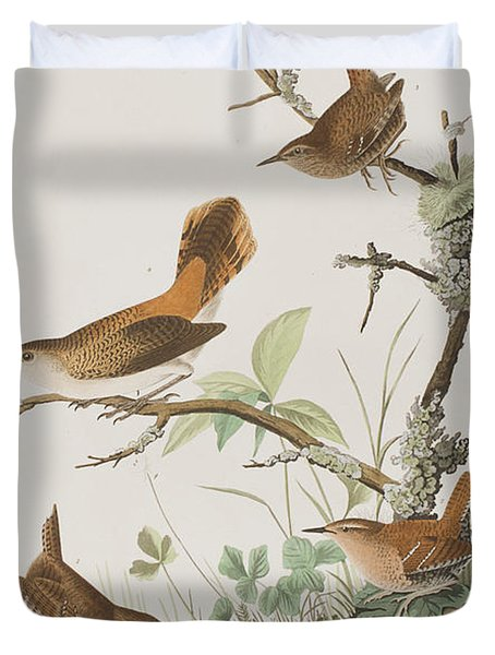 Winter Wren Or Rock Wren Duvet Cover by John James Audubon