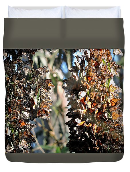 Wintering In Santa Cruz Duvet Cover